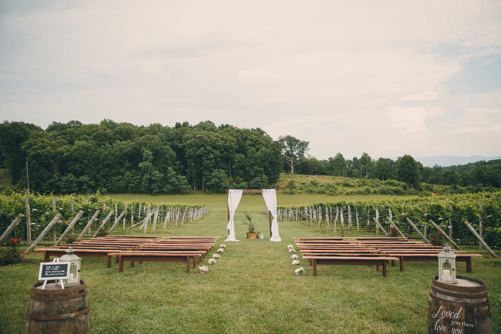 vamountainvineyards-weddings-weddingphotographer-virginia-patcoriphotography(265of800).jpg