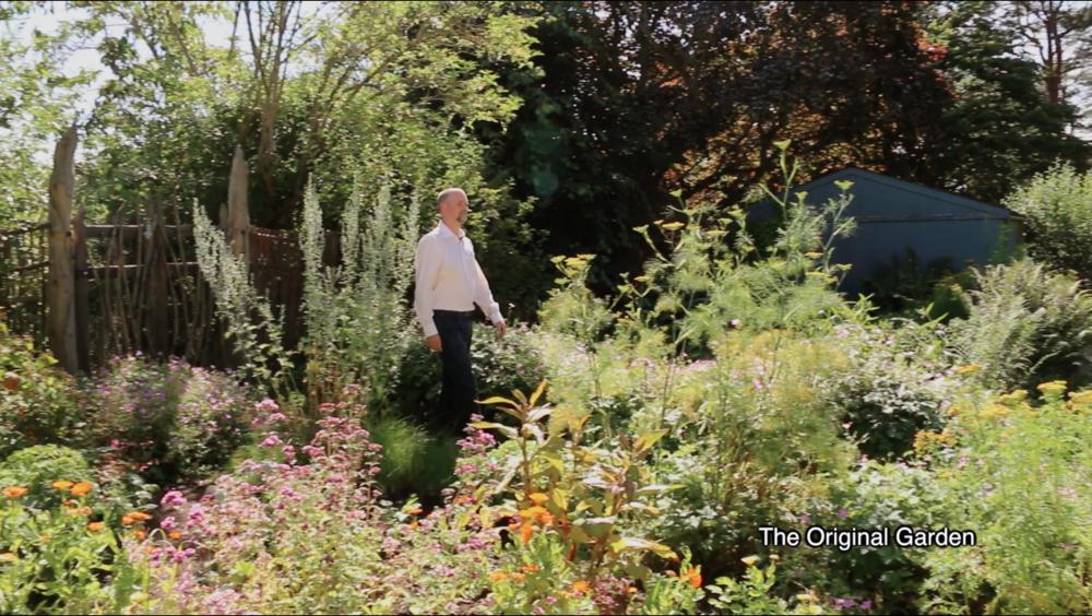 Still:the Original Garden in summer.