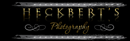 Heckbert's Photography Summerside