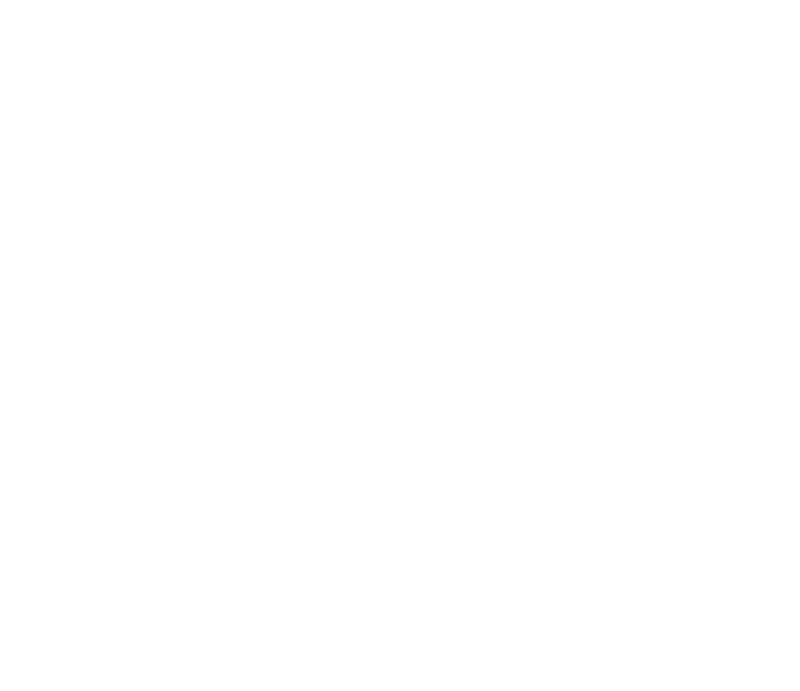 IES-Social Business School