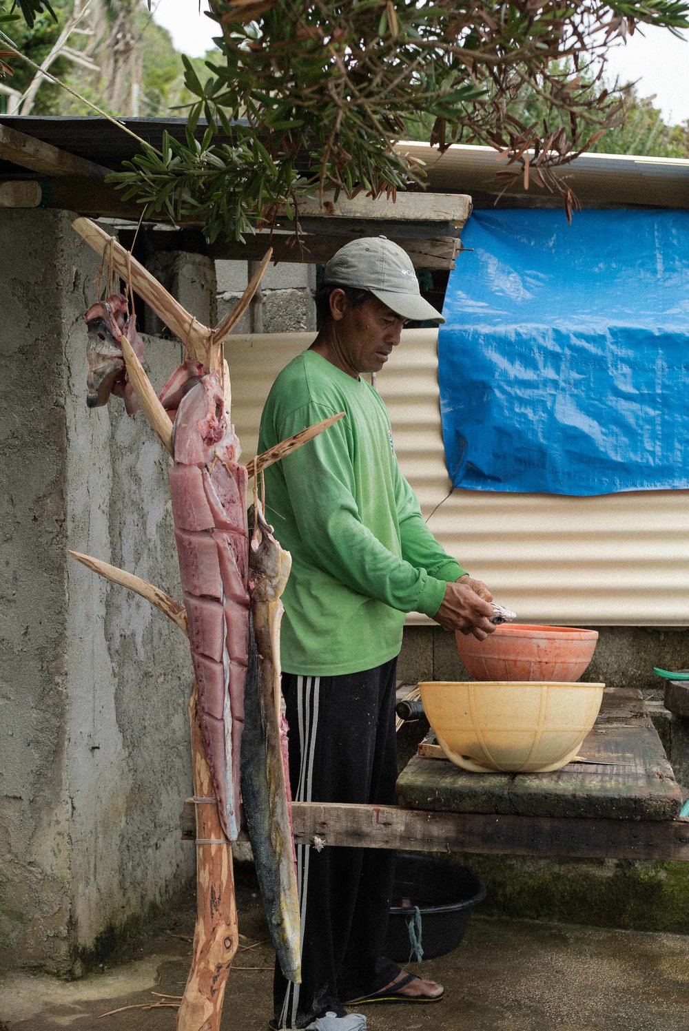 A fisherman slices and cures his morning catch. The dorados are hung outside his home to dry.