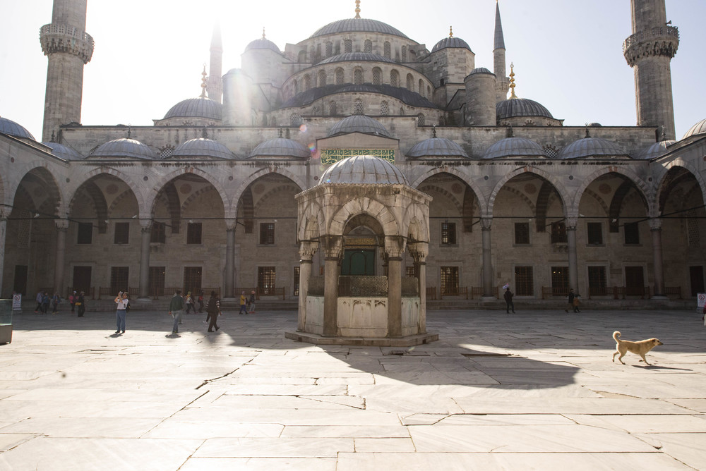 Istanbul- Blue Mosque2 (1 of 1).jpg
