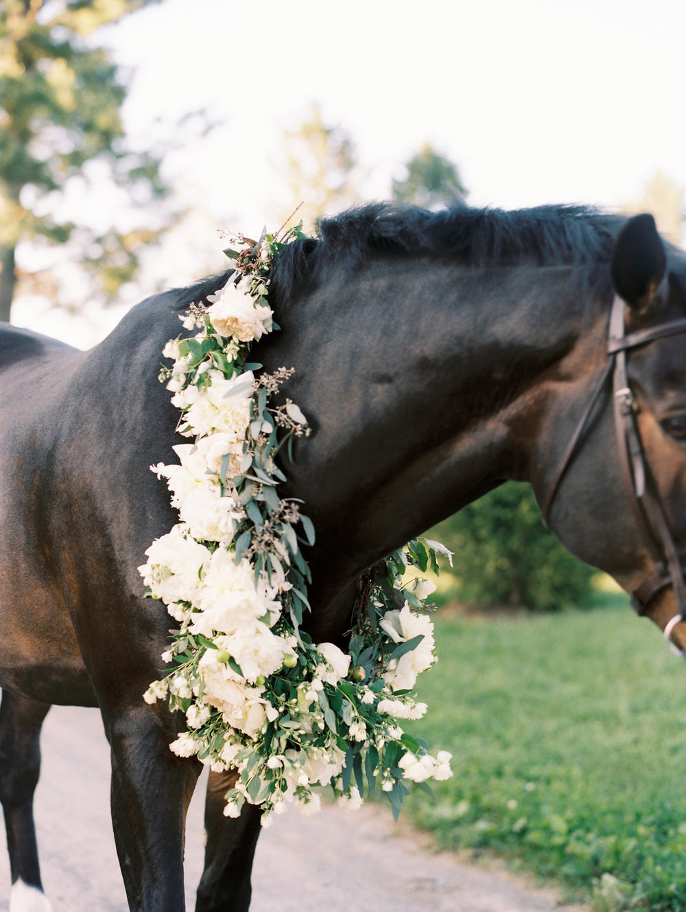 Darling and Daughters Florals, Washington DC, Charlottesville, Richmond, Flower Subscriptions, Eastern Shore, Horse engagement-80.jpg