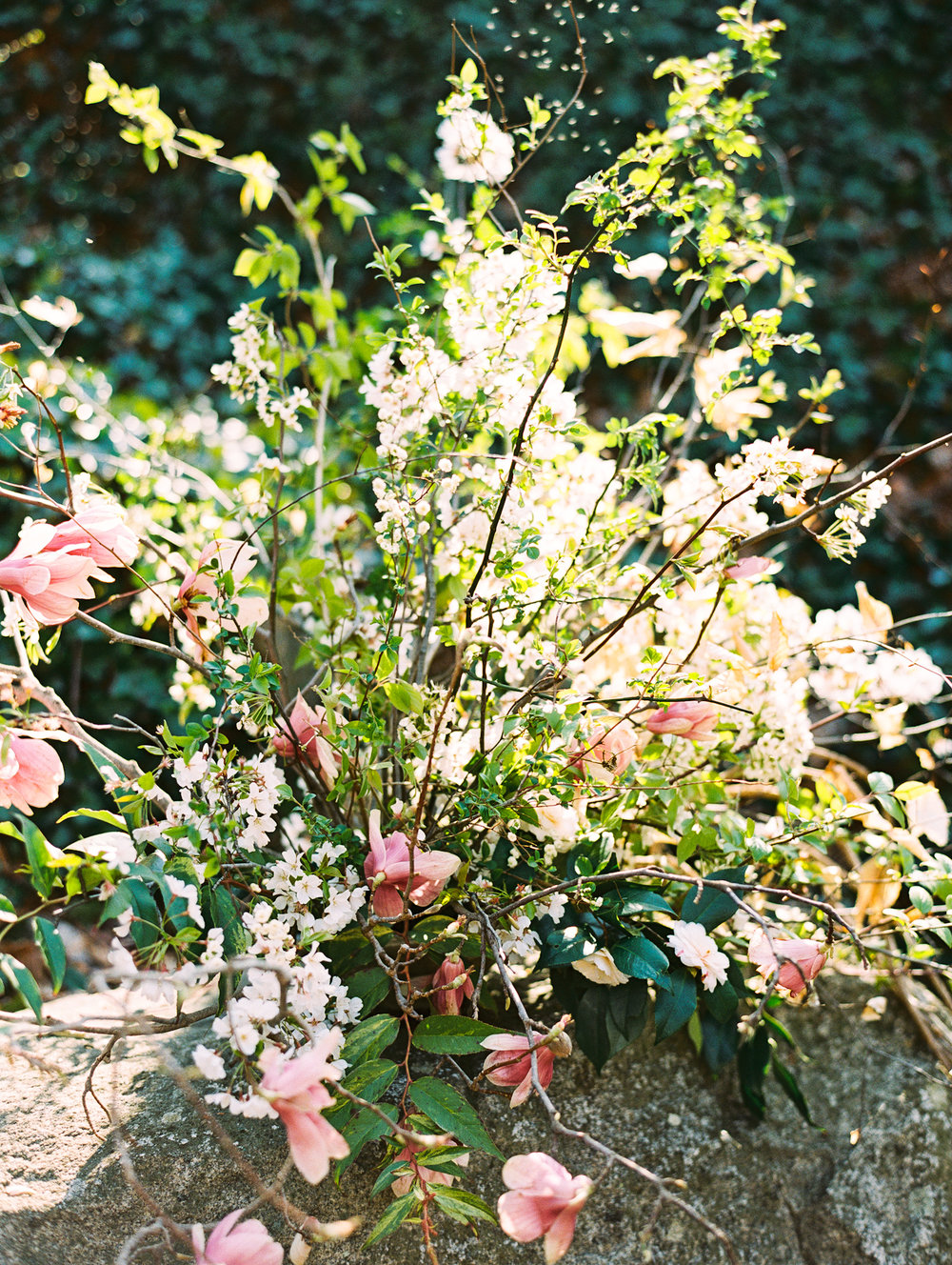 Wedding Design, Maryland, Baltimore, Darling and Daughters Florals, Washington DC, Richmond, Cape May Collaboration-E003.jpg