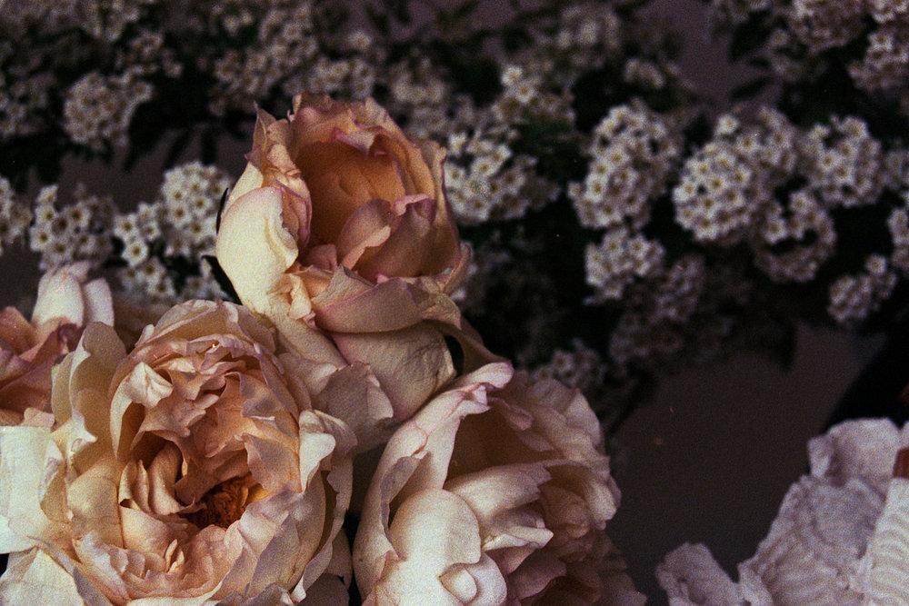 Darling & Daughters Charlottesville, Richmond, Florist, Custom Flowers, Wedding Design, Maryland, Baltimore, Events, Monthly, Flower Tintins Kathy Akey Collaboration2.jpg