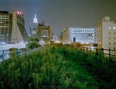 highline-NEW-YORK.jpg