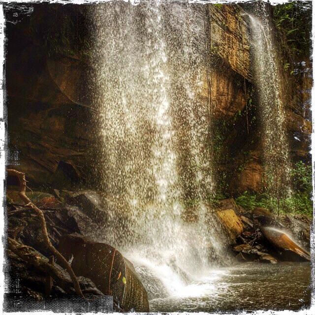 Shimba National Park