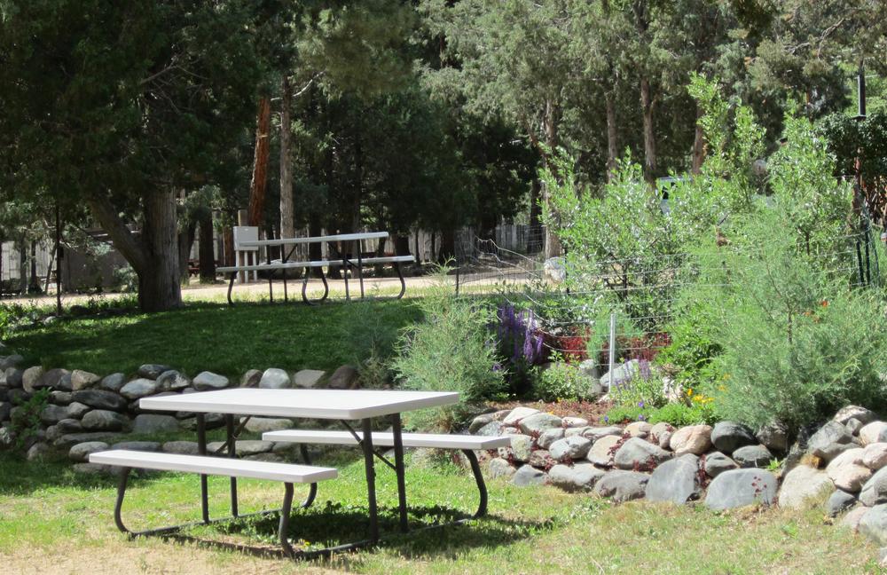 campsites012.jpg