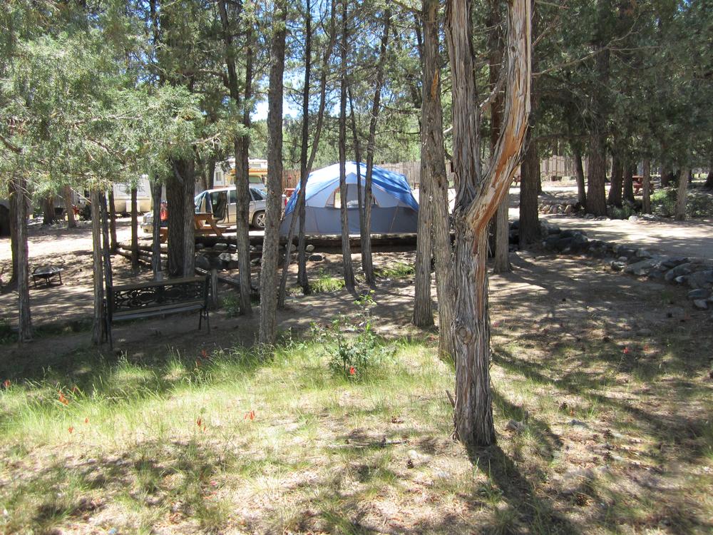 campsites011.jpg