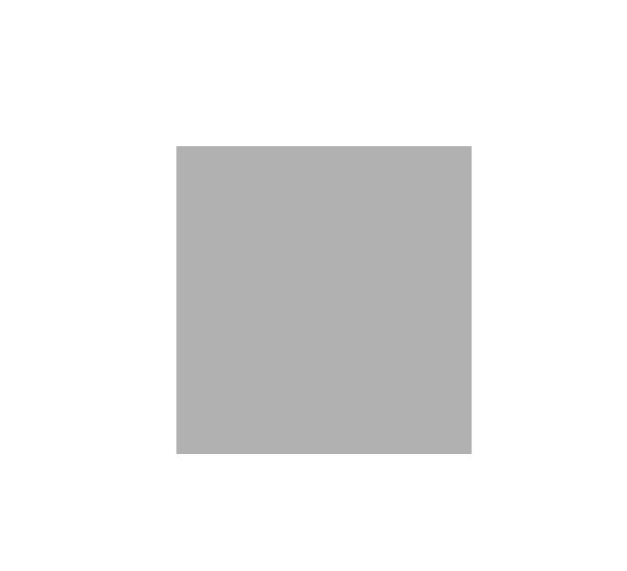 logo_vevey.png