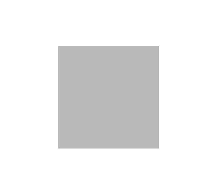 logo_wiki.png