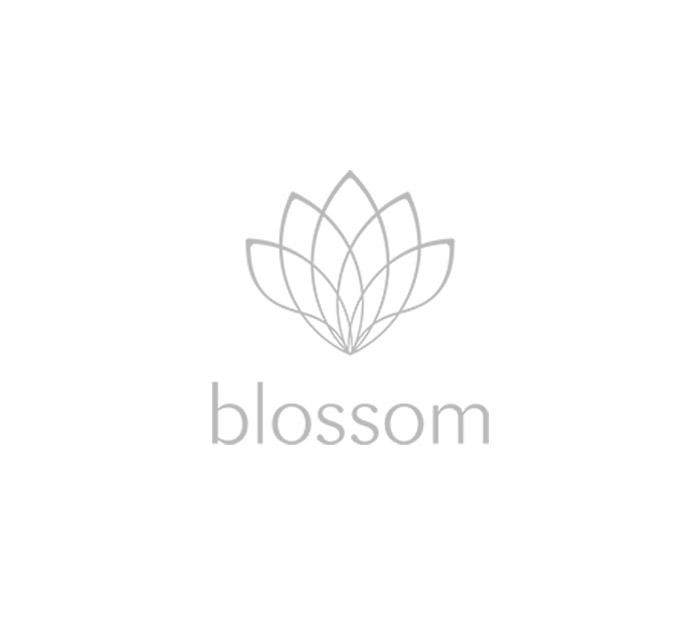 logo_blossom.jpg