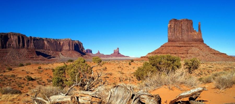 Desert pic.jpeg