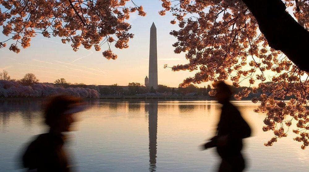Image: source iStock,  Washingtonian.com