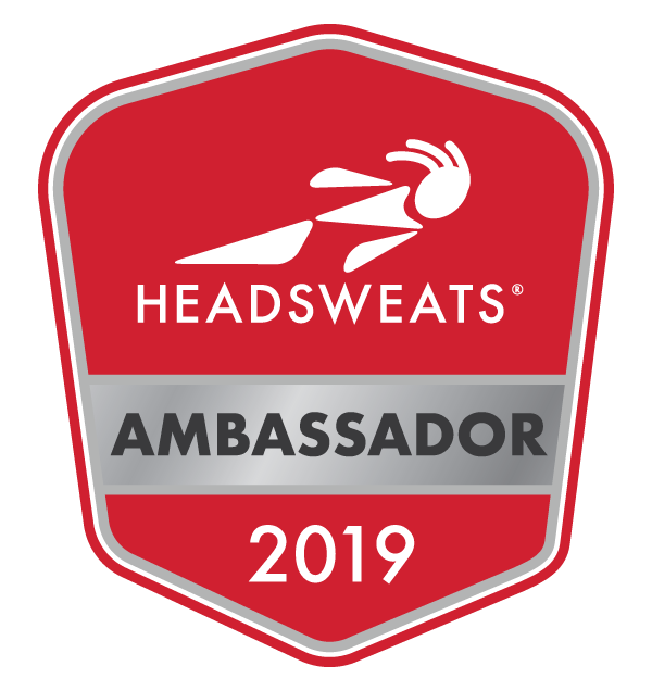 Ambassador-Logo-red-2019-Transparency.png
