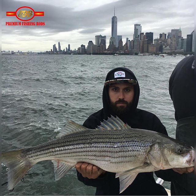 @_mr_victor Always Killin It!  Make sure you chrck out @brooklynfishingclub !! - - - #EbbFishing #brooklynfishingclub  #fishLI #PanFish #Seewhatsoutthere #outdoorslife #fishingDaily #instagramFishing #longislandfishing #outdoors #pennFishing #PicOftheday #Fishon #SaltWaterFishing #Freshwaterfishing #Panfishing #Fishingdaily
