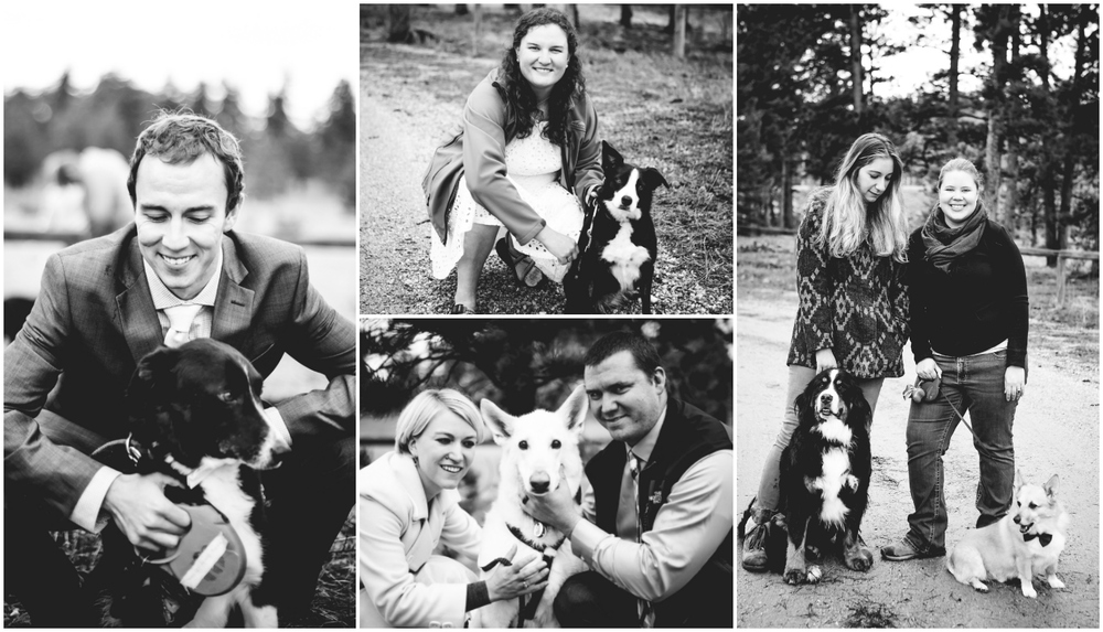 Wedding dogs and their owners. Fort Collins Colorado wedding photographed by JMGant Photography.