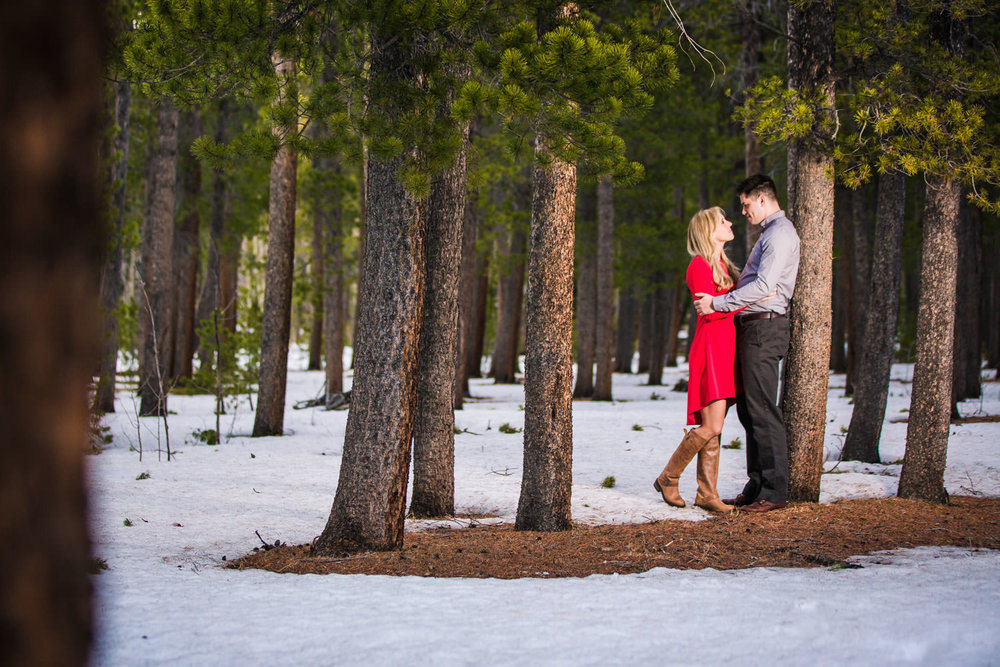 Engagement Pictures in the Pines