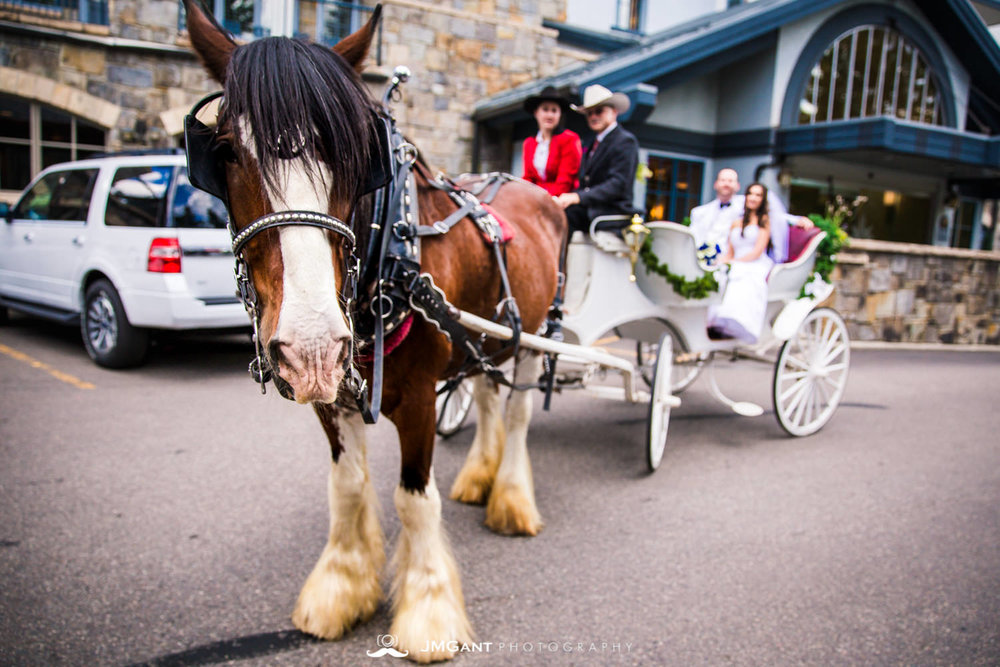 Vail Colorado Wedding | Bride and groom carriage ride | Colorado wedding photographer | © JMGant Photography | http://www.jmgantphotography.com/