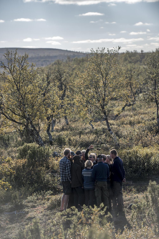 Operaatio Paulaharju vei teatterin erämaahan Kevon luonnonpuiston laidalle.