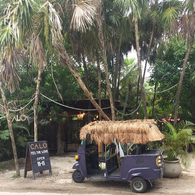 "Find us at  our secret ""not so secret"" jungle flagship store in Tulum @gitanotulum 🐍🌿 #kimonos #jewels #hats #shoes #sunglasses #swim #tuktuk"