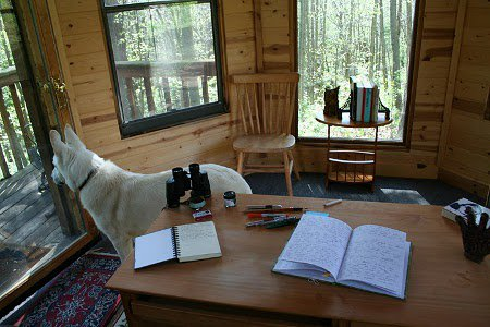 Inside Neil Gaiman's writing gazebo, complete with watchful white wolf.
