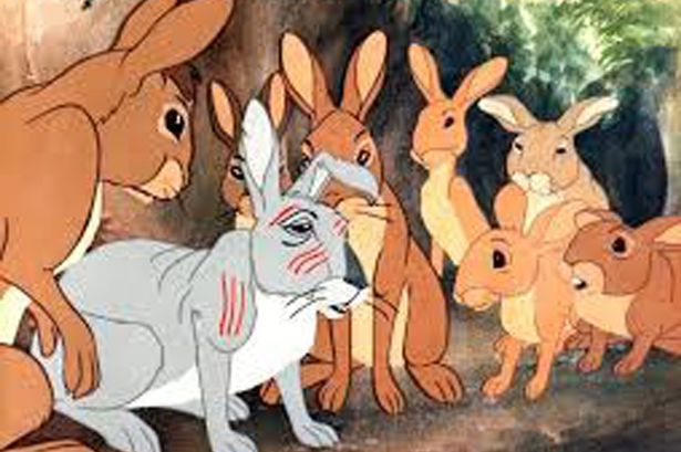 Going underground … as told by the rabbits of Watership Down