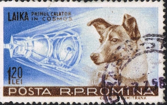 Song post from space: a 1959 Romanian stamp depicts Laika the Soviet canine cosmonaut