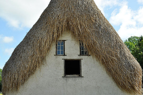 Horrified, hairy house