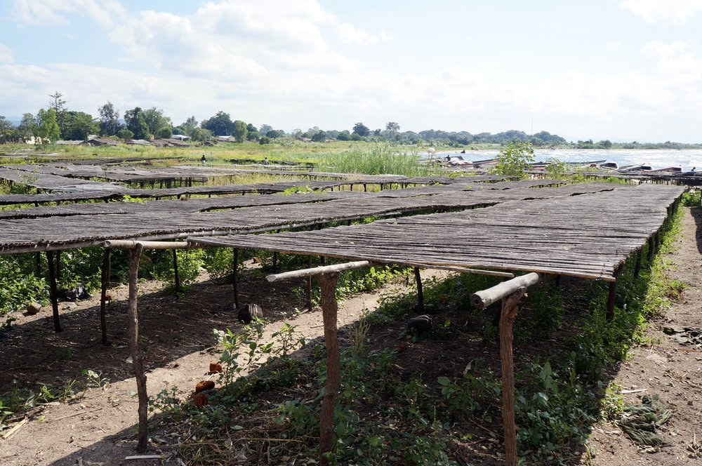 Fish Drying Beds