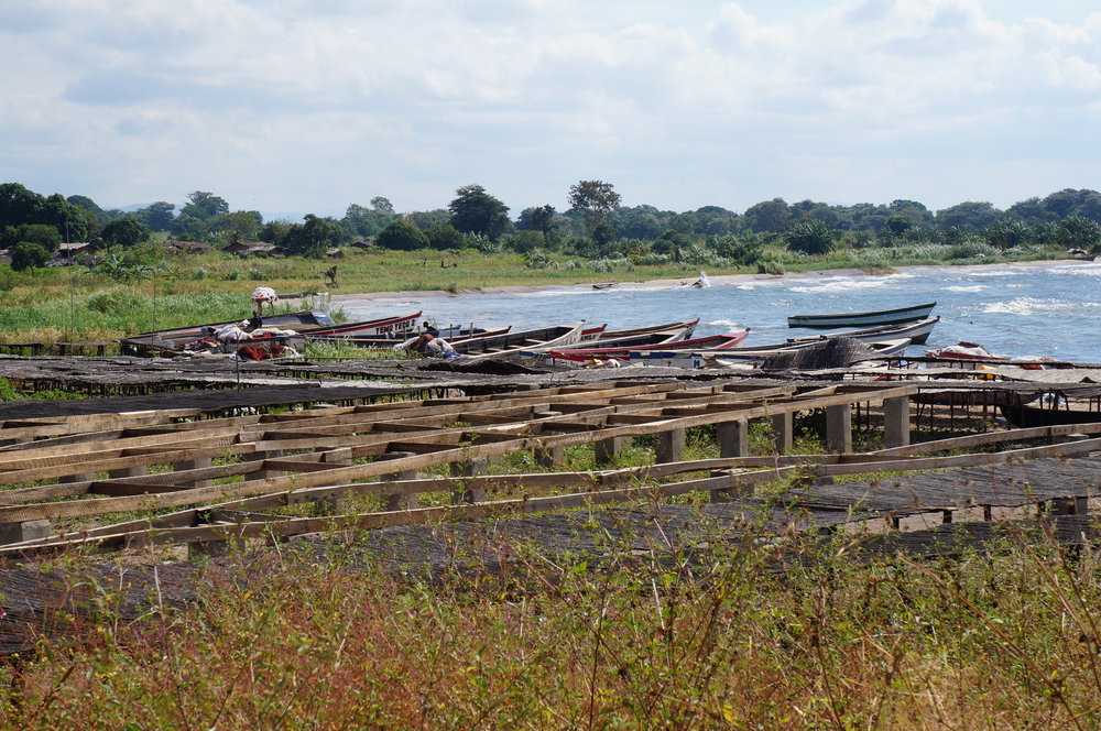 Fish Drying Beds, mid-coast Lake Malawi