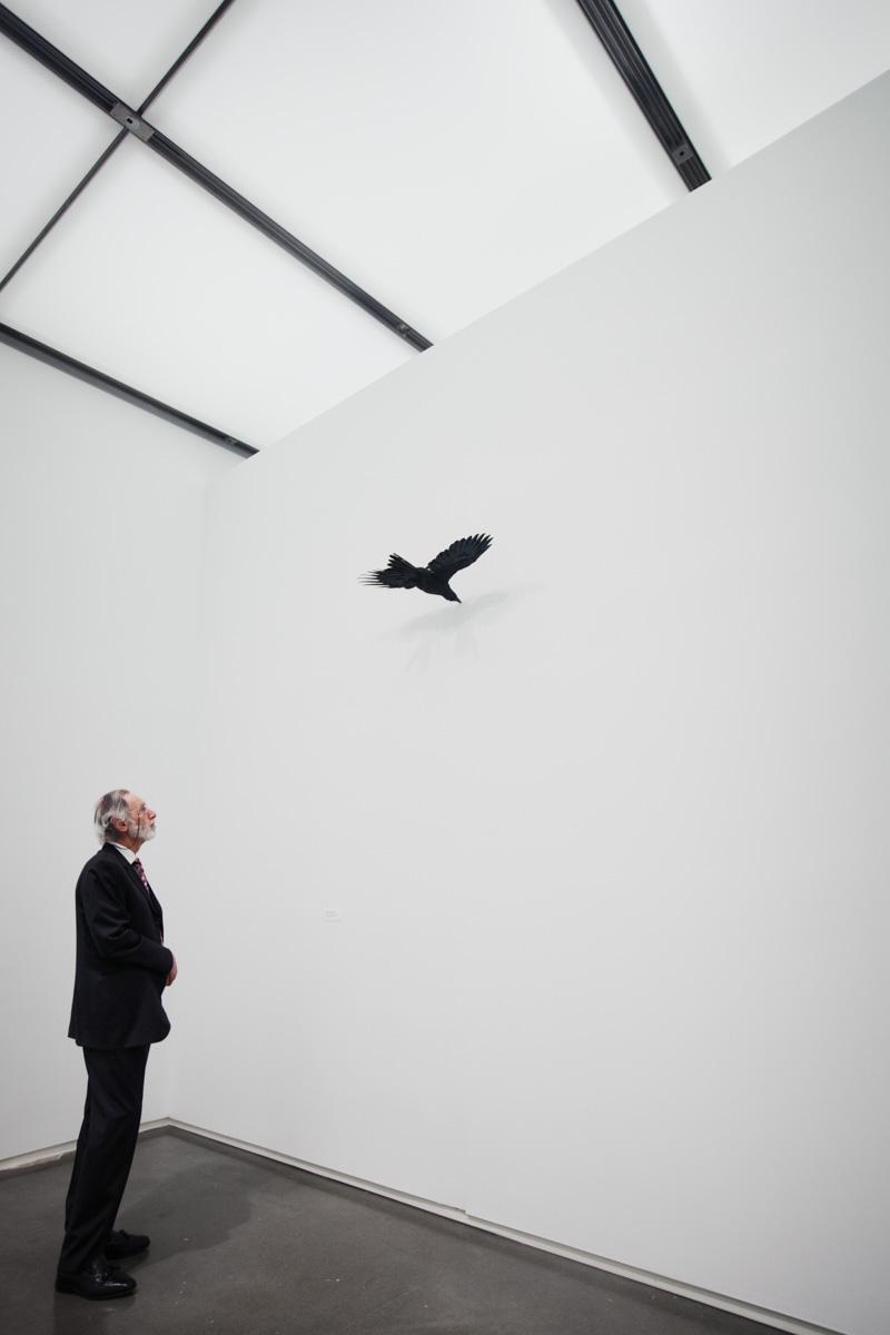 contemporary-art-boston-1.jpg