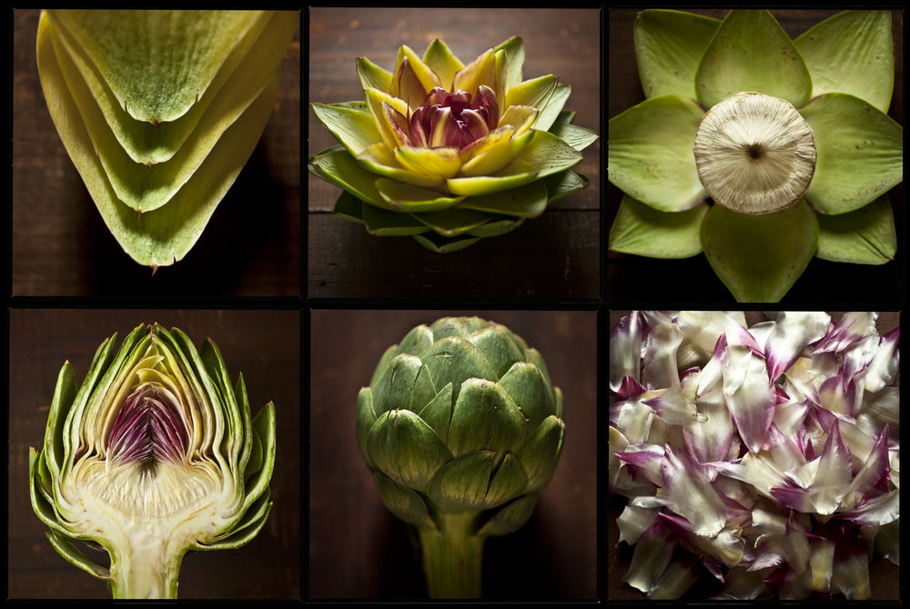 artichoke-study-food-art-1.jpg