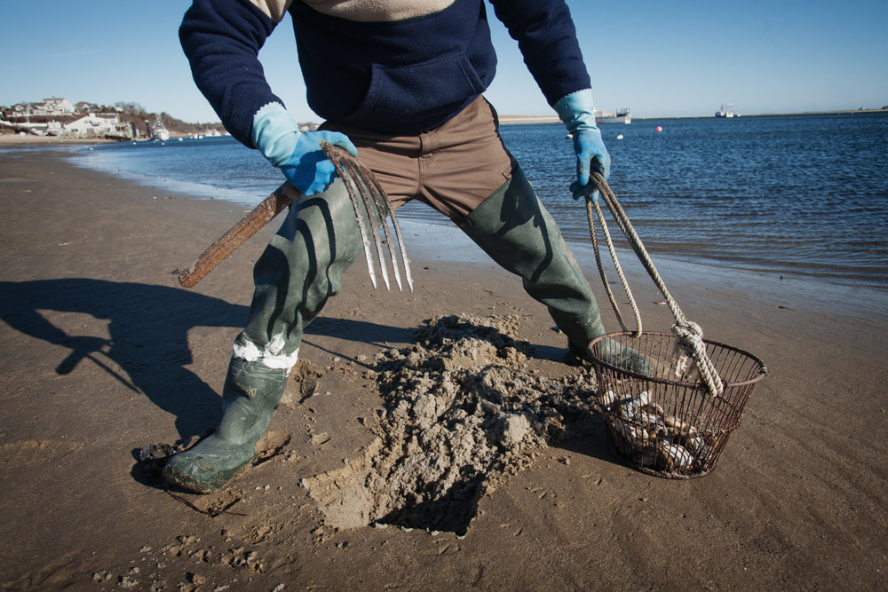 clam-digging-1.jpg