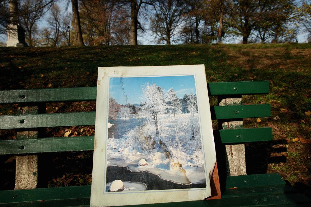 winter-painting-park-1.jpg