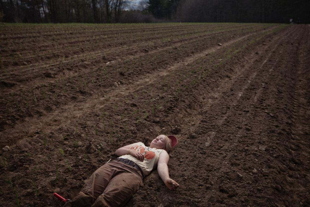 transplant-exhaustion-farm-1.jpg