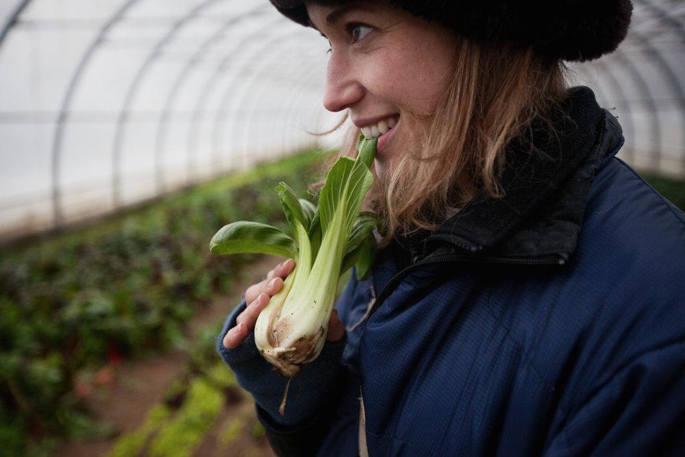farmer-girl-bok-choi-1.jpg