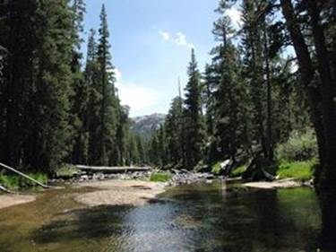 Walker River to Leavitt Meadows