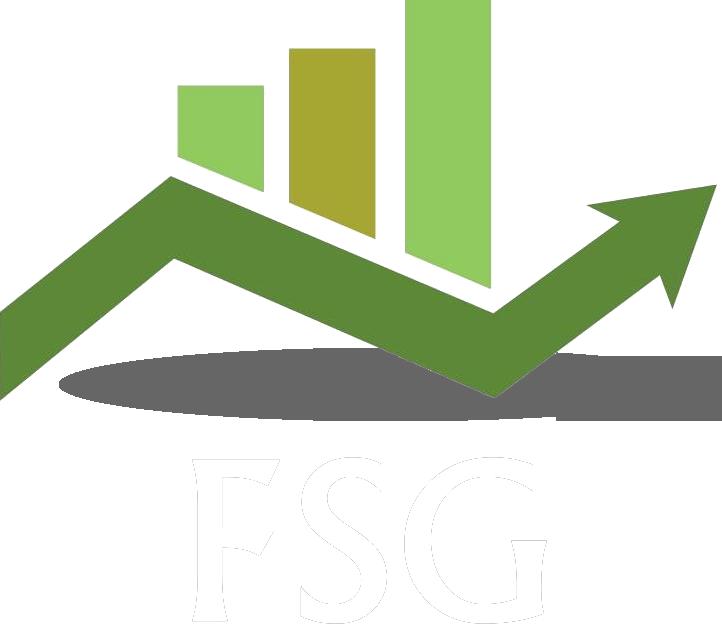 FSG Financial Information Services LP