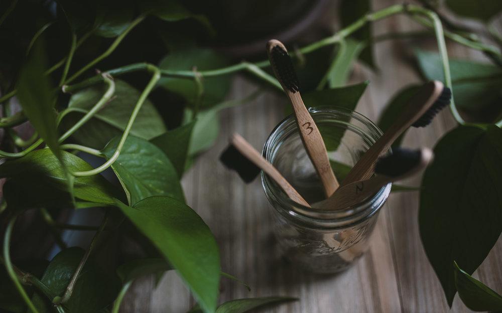 BambooHerbToothbrushes_ProductPhotography_Product Photography In Tempe_ArizonaProductPhotographer_SamanthaRosePhotography_-8.jpg
