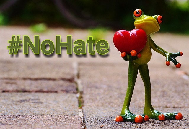 6 Passion Project Ideas To Combat Hate (including an America's Got Talent audition) -