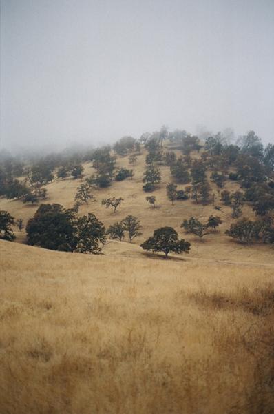 california_005.JPG