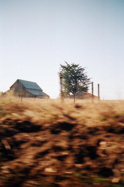 california_0016.JPG