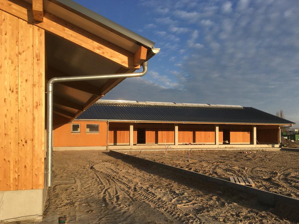13-Reitsportzentrum-LIGNE Architekten.jpg