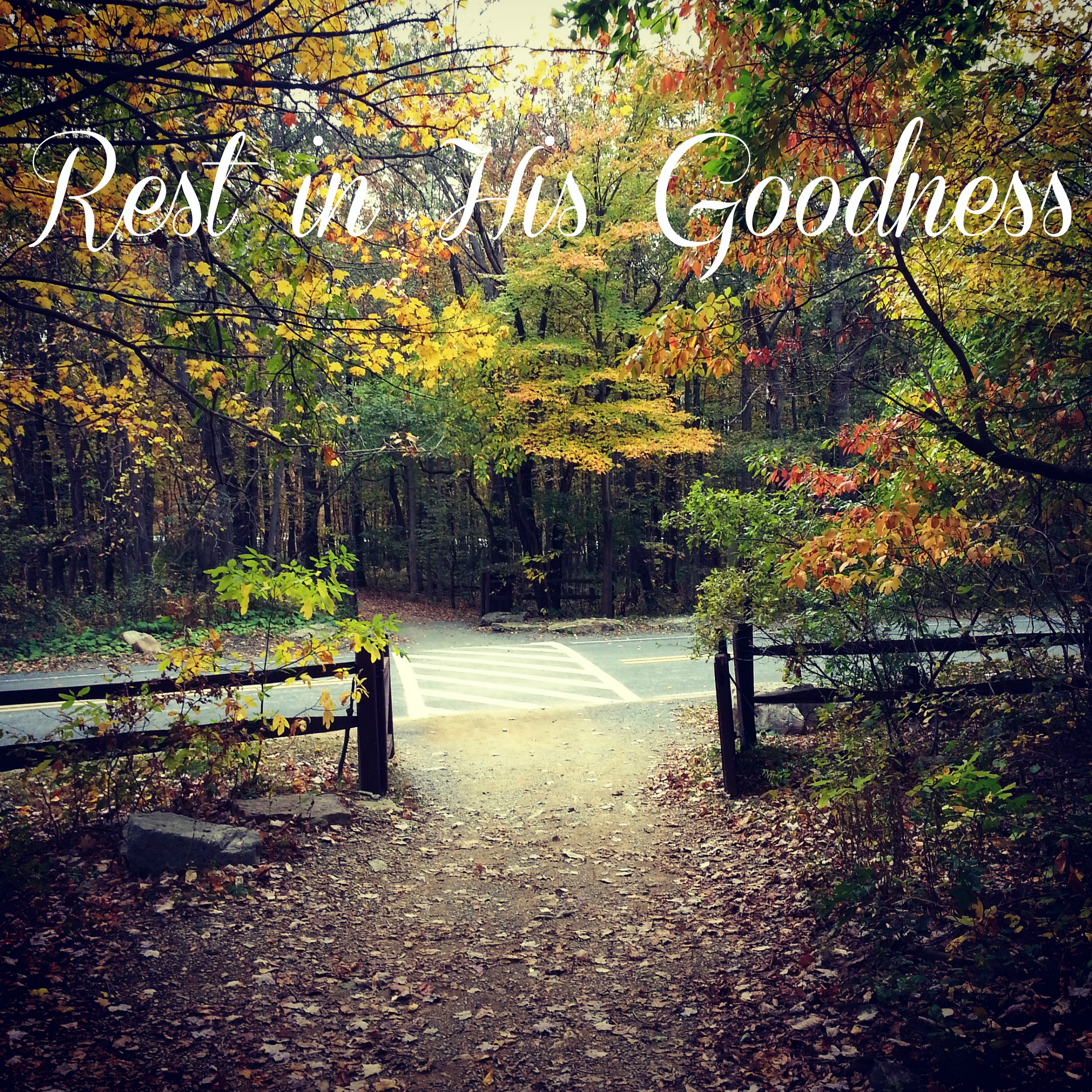 Rest in His goodness