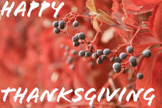 Enjoy! Have a happy Thanksgiving!