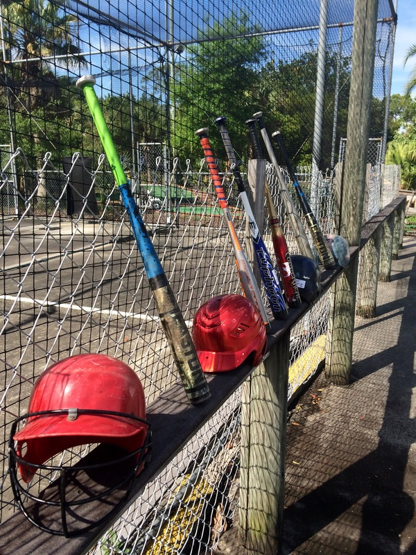 batting-cages-helmut.jpg