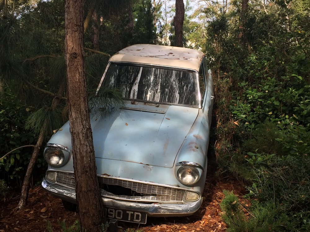 The Weasley's flying Ford Anglia can be viewed in the Dragon Challenge queue.