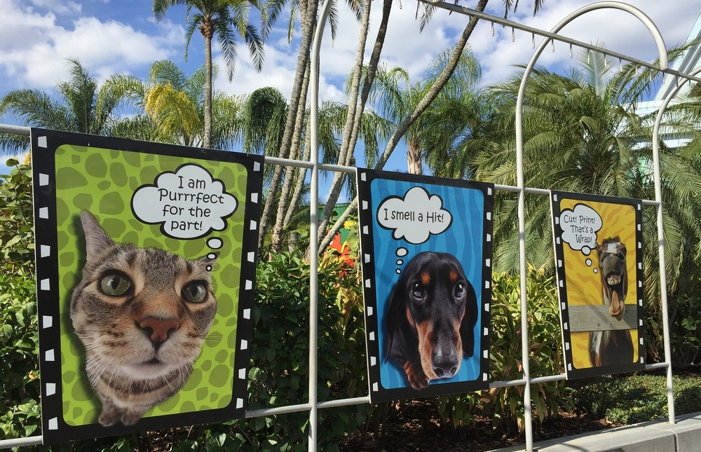 Banners advertising Animal Actors on Location in Universal Studios Florida.