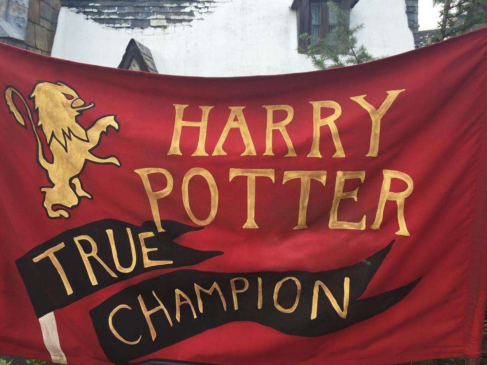 Banner Near Queue at Dragon Challenge